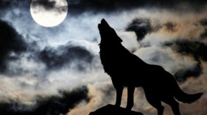 lockdown lone wolf