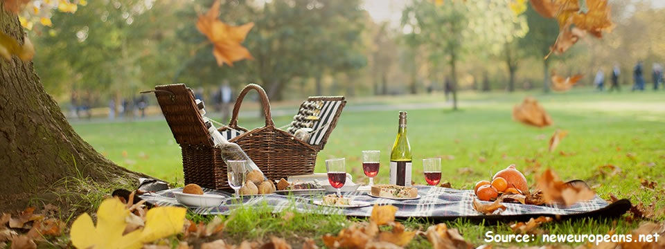 lake picnic cover